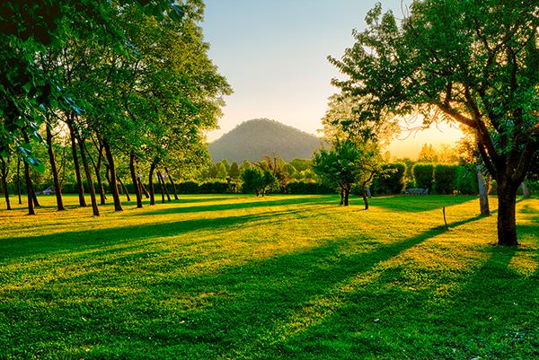 Park des Agriturismo Corte d'Acqua in Abano Terme